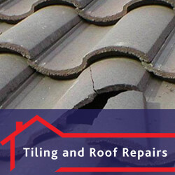 Tiling and Roof Repairs